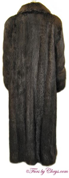 Beaver Coat Back image